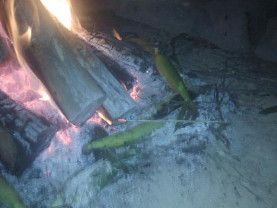 Cooking Corn