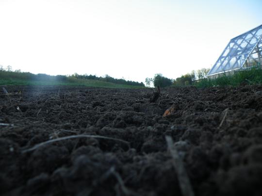 Rototilled Garden Soil