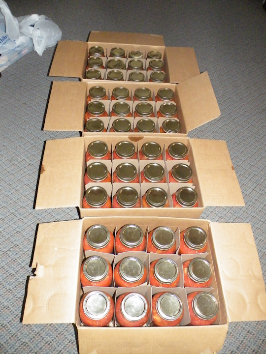 A Lot of Canned Tomatoes